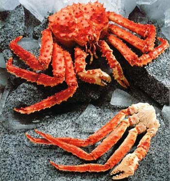 how to cook king crab like fishmens